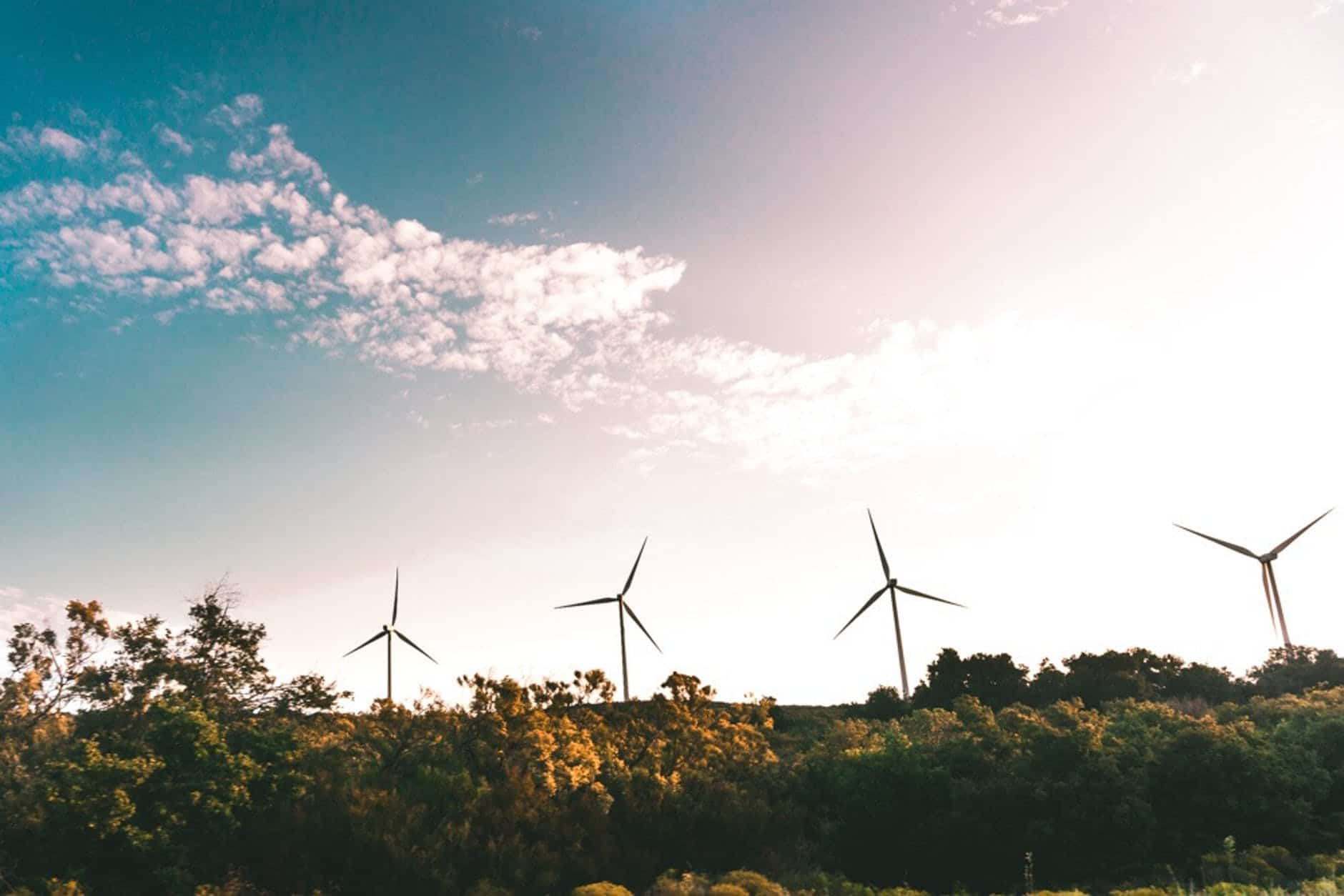 Carbon neutral vs net-zero – what's the difference?